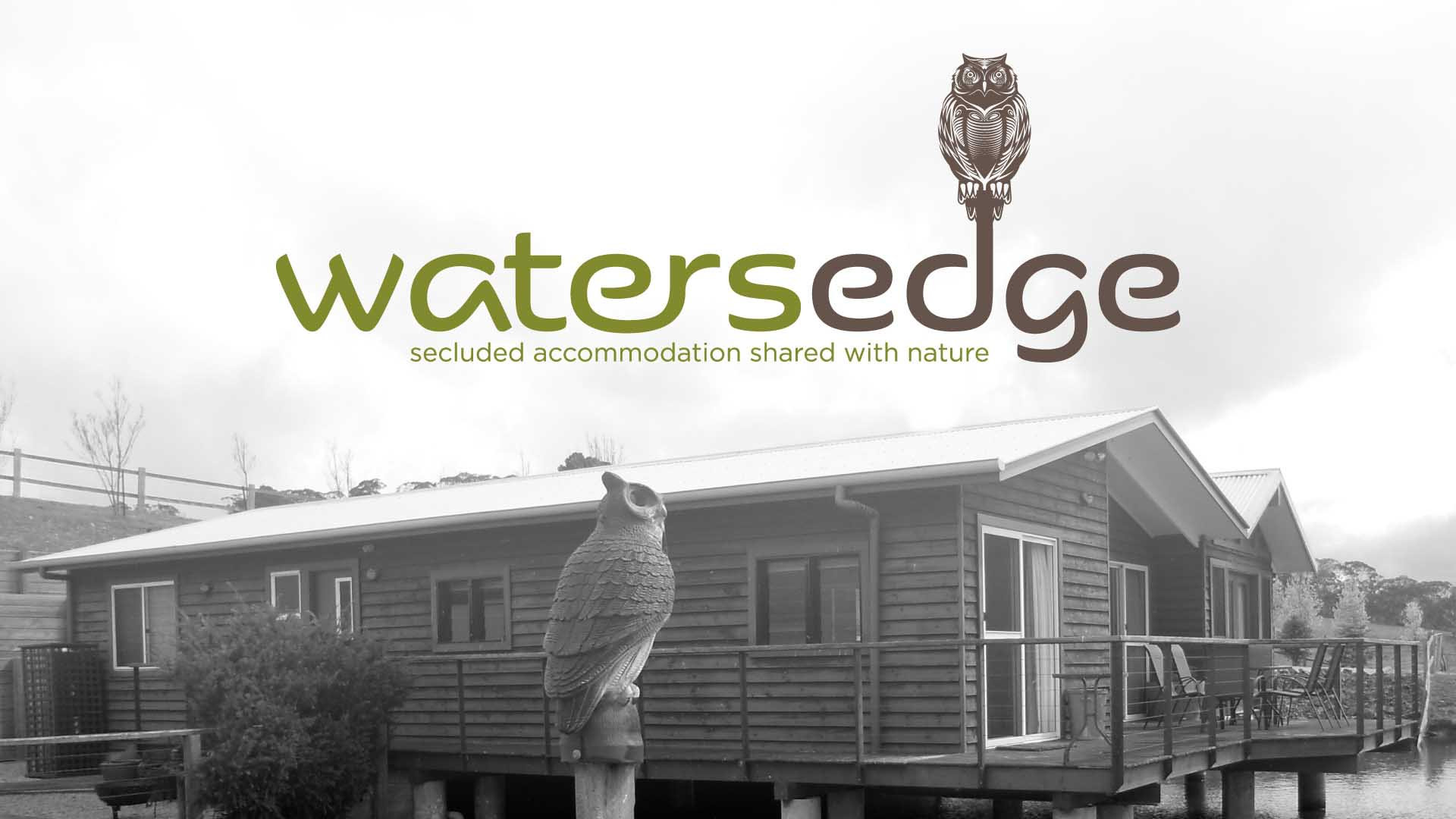 Portfolio - Watersedge Logo | StartleArt Graphic Design